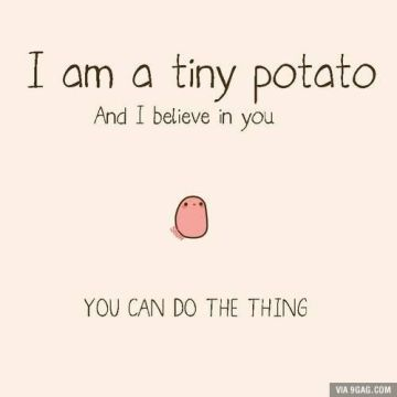 This tiny potato does not belong to me. If he belongs to you a) you're rad and b) please tell me.